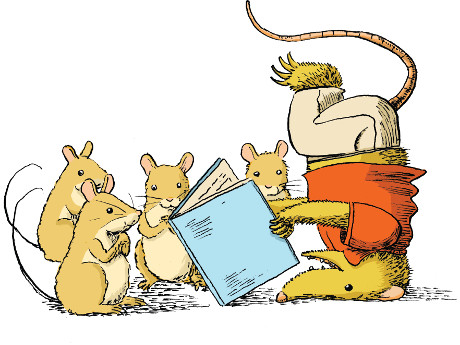 possums reading a book