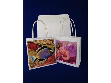 Gift Bag Photo