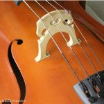 Photograph by Georg Feitscher of a cello close-up