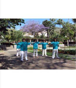 group of people doing Luk Tung Kuen exercises