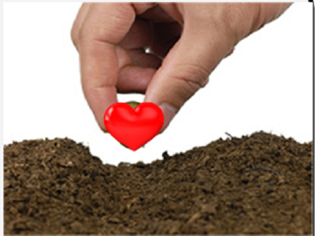 Hand planting heart in dirt