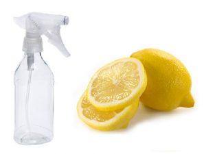 Spray bottle with lemons