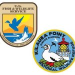 U.S. Fish & Wildlife Service emblem with Kilauea Point Junior Ranger emblem