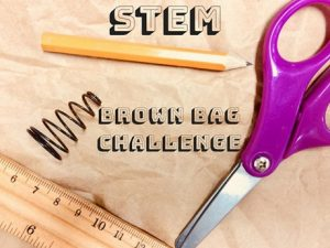 stem brown bag photo