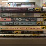 Stack of Newbery books.