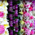 Strands of flower leis