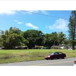 Banyan 1 acre lot in Hawi