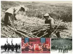 Japanese Americans in Hawaii