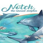 Book cover of Notch, the Rescued Dolphin