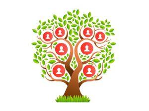 Family history tree illustration
