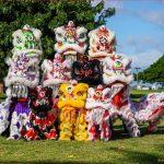 Asian Lion Dance Team