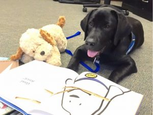 Assistance Dog with Book